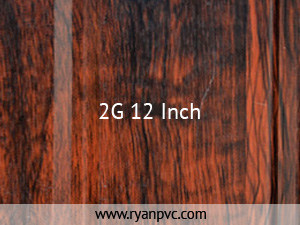 2G (12 inch)
